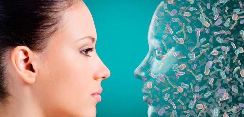Микрофлора влияет на нервную систему