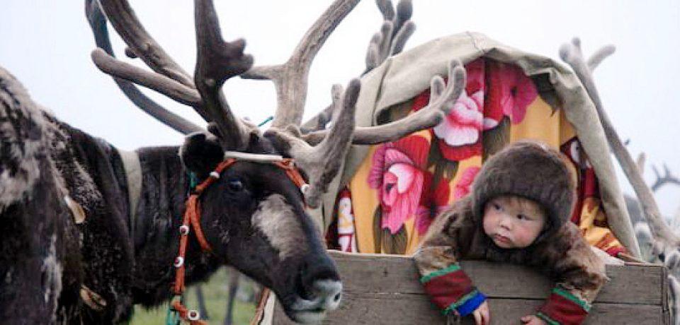 Арктический климат и здоровье детей