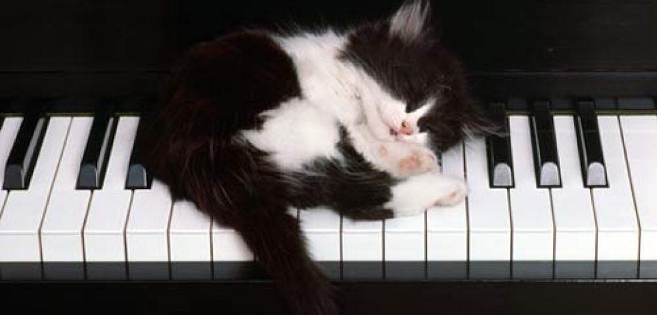 Музыка и стресс