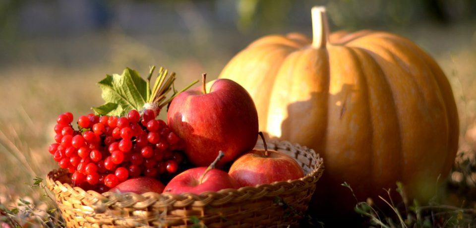 Что есть осенью