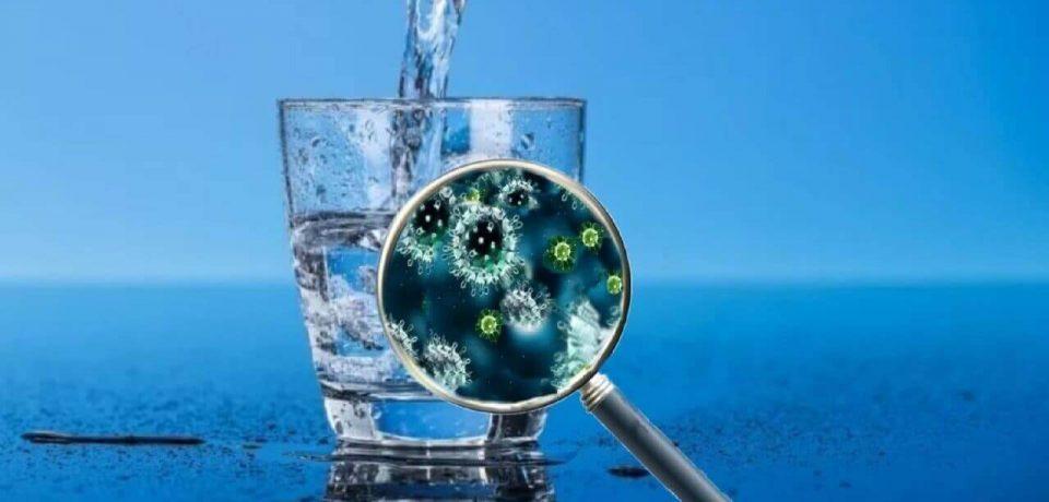 Может ли коронавирус передаваться через воду