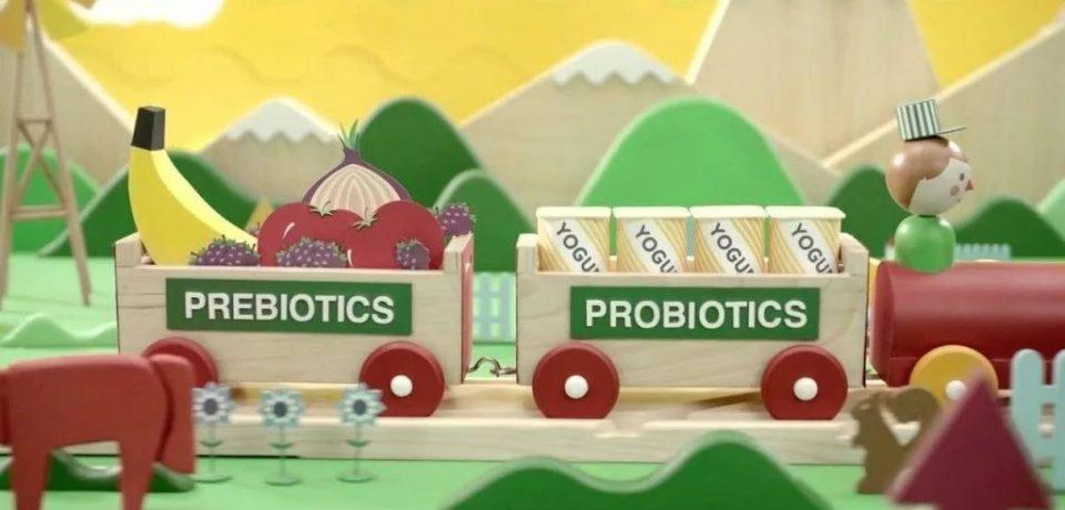 Пребиотические продукты