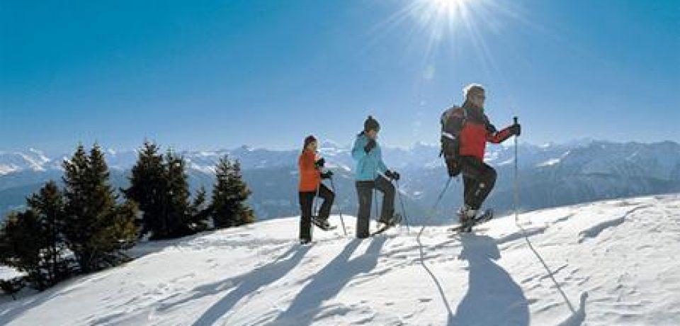 Польза активного зимнего отдыха
