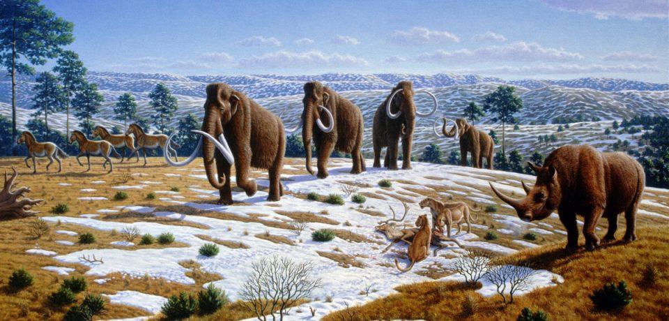 Ученые раскрыли секреты древнего климата России