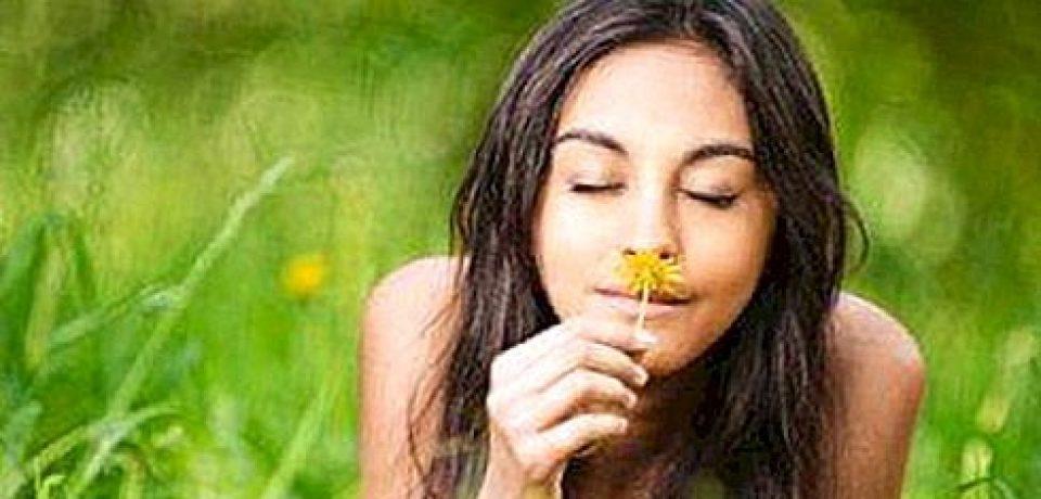 Как запахи влияют на здоровье