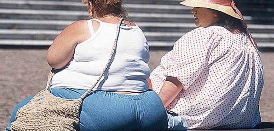 Теплые дома виноваты в эпидемии ожирения
